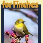 best cages for finches